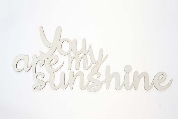 frase di legno da appendere you are my sunshine